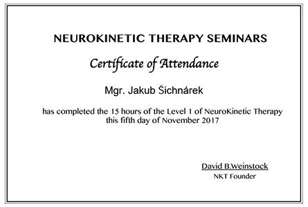 Neurokinetická terapie